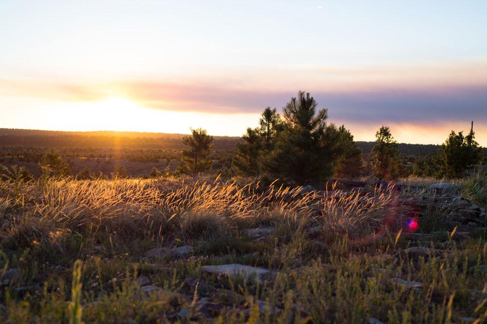 Sunset on grasslands near Black Canyon Lake Heber AZ