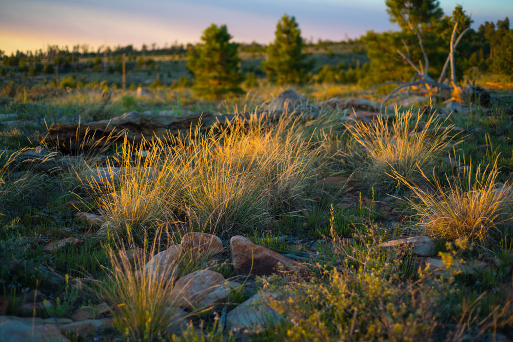 Sunset near Black Canyon Lake