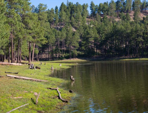 Black Canyon Lake Cove
