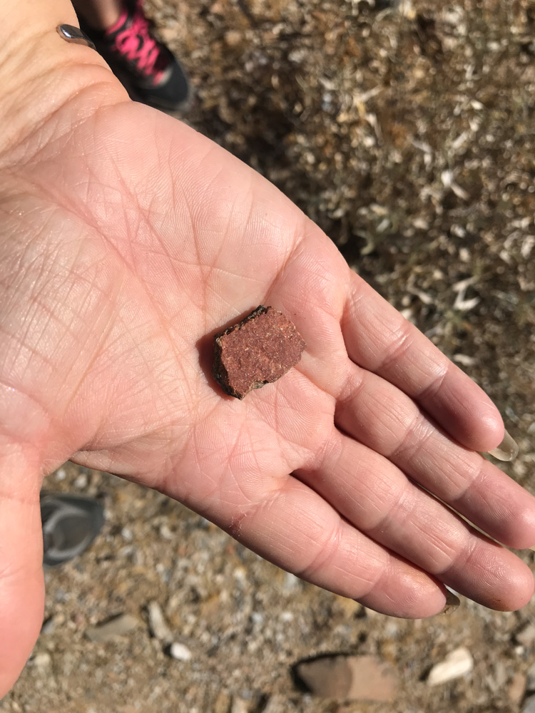 ancient salado red pottery sherd